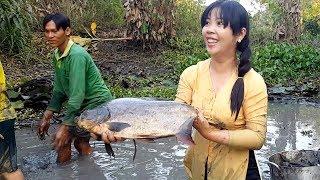 Tết sắp đến, bắt được con cá này thì cả nhà ăn không hết  | Thôn Nữ Miền Tây