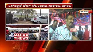 More Updates On Bhimavaram Kodi Pandalu | Sankranthi 2019