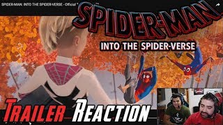 Spider-Man Into the Spider-Verse Angry Reaction!