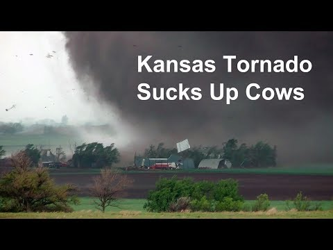 Tornado Videos - Kansas Tornado Sucks Up Cows And Blows Farm Apart.