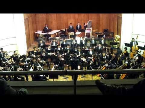 orquesta sinfonica nacional de bolivia  uyarikuna  aguita de putina kantu