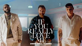 Download David Guetta x MistaJam x John Newman - If You Really Love Me (How Will I Know) [ Video] Mp3/Mp4