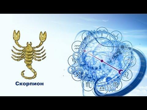 гороскоп скорпион на июль женщина для стирки термобелья