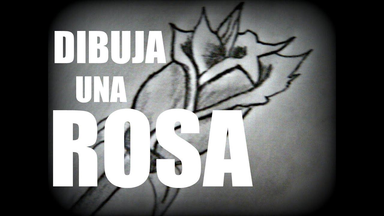 Como dibujar una rosa drawing a rose youtube - Como secar una rosa ...