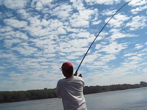Pesca de curimba com chuveirinho