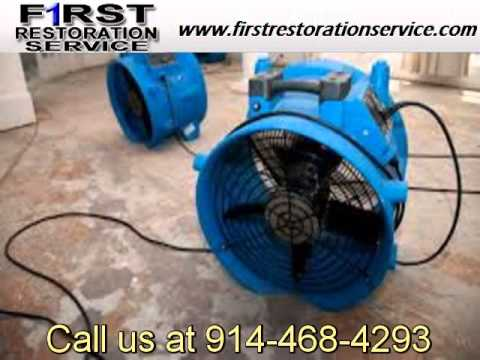 carpet cleaner MONTROSE NY 10548   Companies