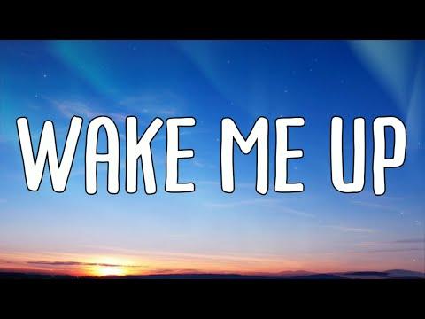 Avicii - Wake Me Up (Lyrics Video)