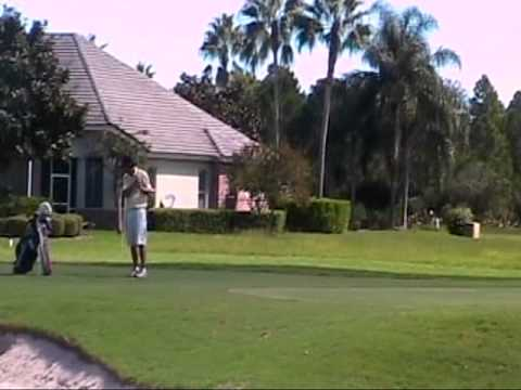 Warner University Men's Golf Highlights -
