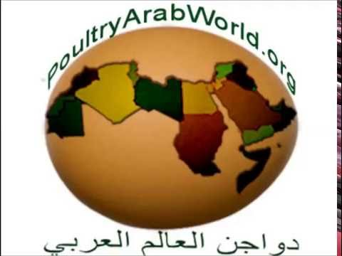 May 2016 Poultry Arab World news bulletin