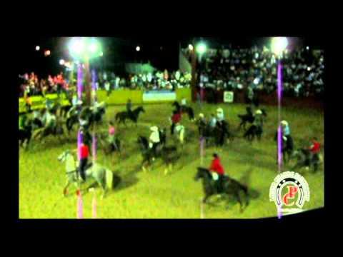 Torneo de lazo 2 de Julio 2012 Panchocot