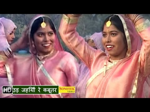 Haryanvi Hot Songs - Ud Jaiyo Re Kabutar | Patli Kamar | Sonali...