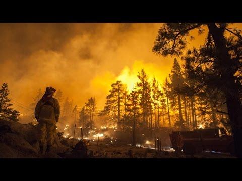 Clique e veja o vídeo Curso Formação e Treinamento de Brigada de Incêndio Florestal