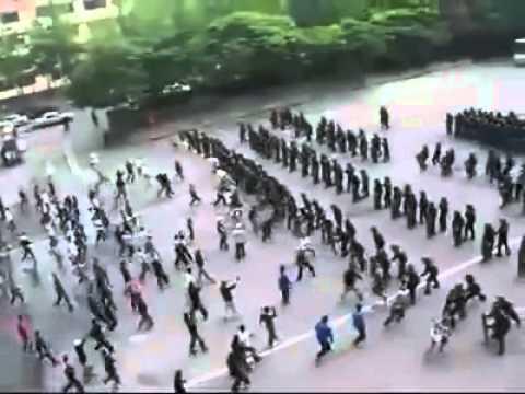 Korean Police Riot Control   Amazing and Crazy videos