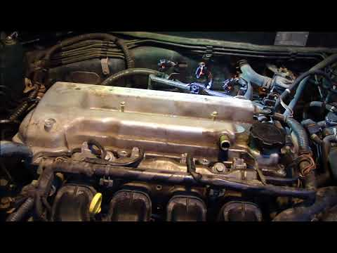 How to check timing chain status VVTi engine Toyota. Years 2000 to 2008.