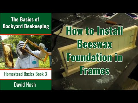 Beginning Bees Iv Installing Wax Foundation In Frames