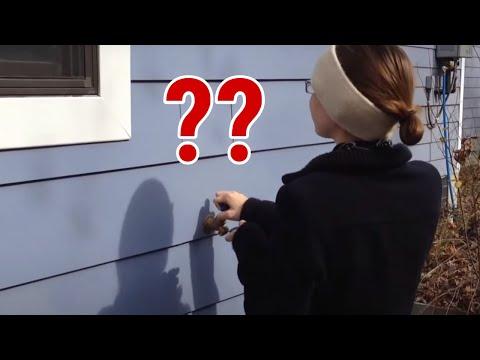 Hidden Exterior Door - Funsterz.com - Amazing Videos ...