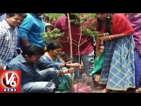 Telangana Govt Set All Arrangements For Fourth Phase Of Haritha Haram | V6 News