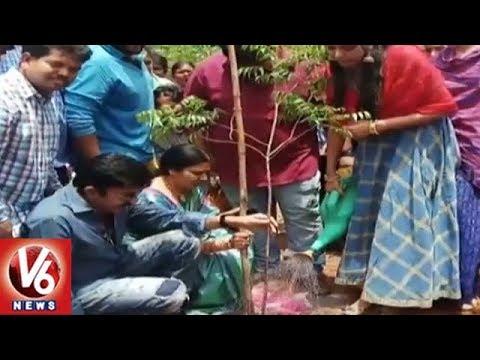 Telangana Govt Set All Arrangements For Fourth Phase Of Haritha Haram   V6 News
