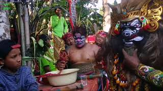 """Seni Jaranan Buto Gaya Baru """" Seno joyo """"  - With Aditya ( Dalang Koplak ) - Live Ndarungan Sempu"""