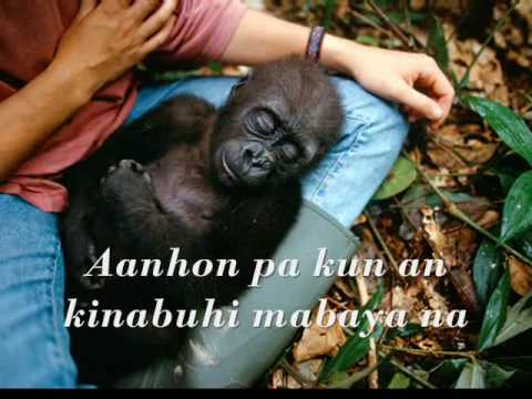 Aanhon Pa... (with subtitle) waray-waray song