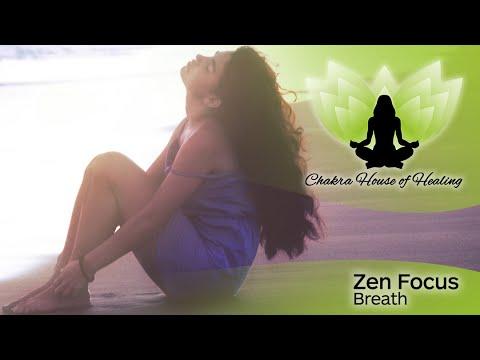 Breathing Properly - Zen Focus