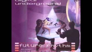 Watch Digital Underground Hella Bump video