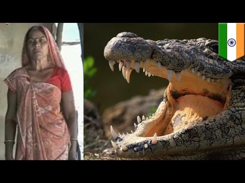 Crocodile attack: Mother in India saves daughter from becoming lunch