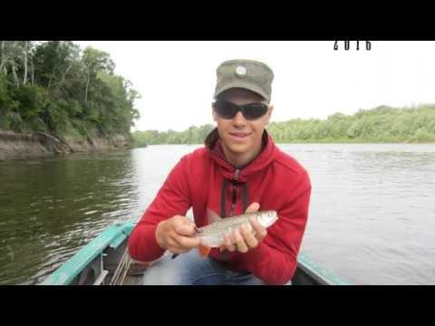 рыбалка в ростовской области нахлыстом