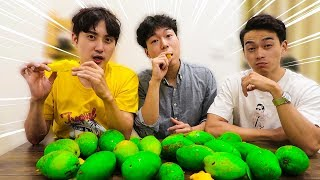 Người Hàn mua 200k Xoài Keo Việt Nam ăn thử và cái kết ???