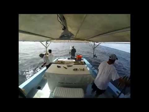 Red Snapper commercial fishing