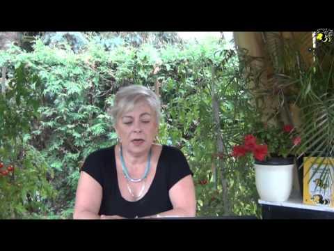 Honigmann -  Nachrichten vom 19.  August 2015 -  Nr. 662