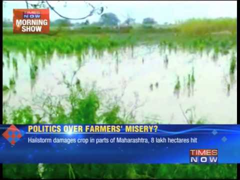 Hailstorm damages crop in Maharashtra