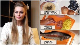Простые Рецепты - Завтрак, Обед, Ужин - Правильное питание, Полезная еда