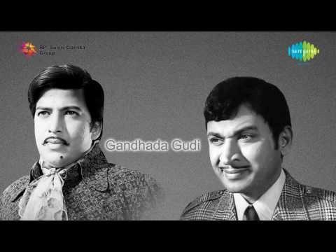 Gandhada Gudi  | Arerere Ginirama song