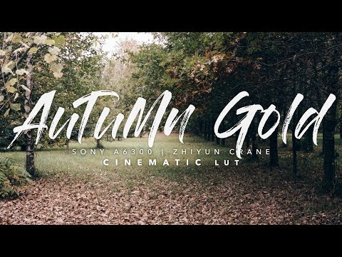 Autumn Gold | LUT Download (Sony a6300 + Zhiyun Crane)