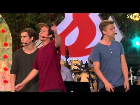 IJustWantToBeCool-Självis LIVE-Allsång på Skansen 2014