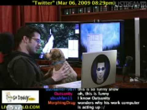 Chris Pirillo Plays with his dogs Wicket and Pixie