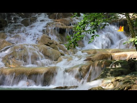 Clique e veja o vídeo Metodologia de Avaliação de Impactos Ambientais - Curso Técnicas de Avaliação de Impactos Ambientais