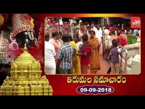 తిరుమల తిరుపతి సమాచారం | Tirupati Tirumala Samacharam Telugu Today | YOYO TV Channel