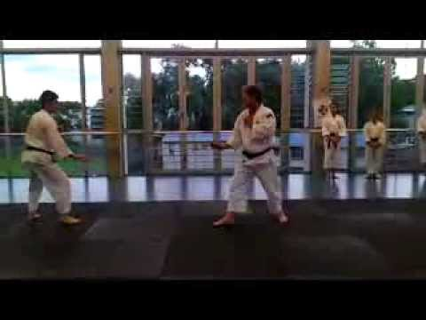 Training: Shorinji Kempo - Auckland Central Branch, New Zealand Image 1