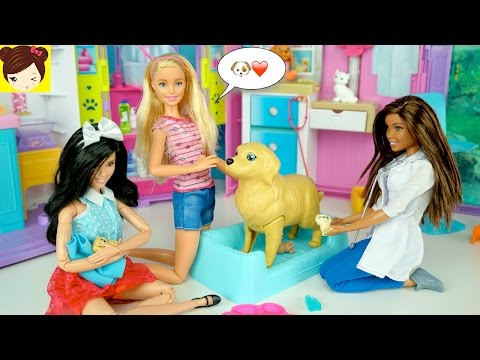 La Perrita de Barbie esta Embarazada y Tiene 3 cachorros - Juguetes de Barbie y Perritos