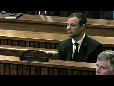 Pistorius lawyer gives closing arguments in murder trial