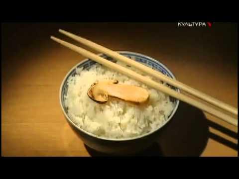 Самый дорогой гриб Мацутакэ МАЦУТАКИ