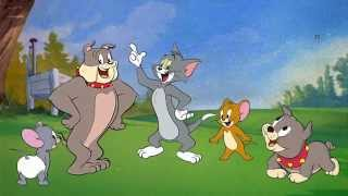Tom & Jerry Finger Family Nursery Rhymes for Children and preschoolers