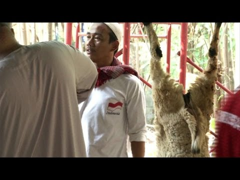 Indonesian Muslims celebrate Eid, sacrifice animals