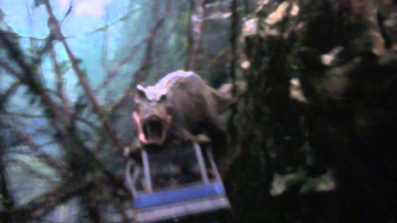 King Kong 360 3d Universal Studios Hollywood Universal Studios Holl...