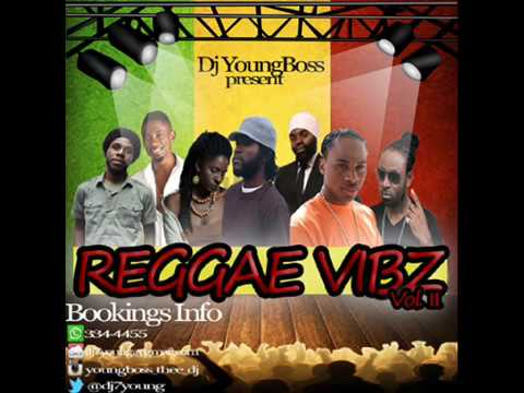 2015 JULY  NEW Conscious  Culture Reggae mix   dj young boss