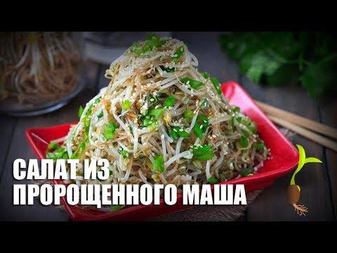 Салат из пророщенного маша — видео рецепт