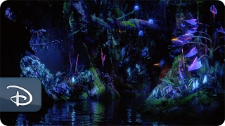 Na'vi River Journey | Pandora - The World of Avatar