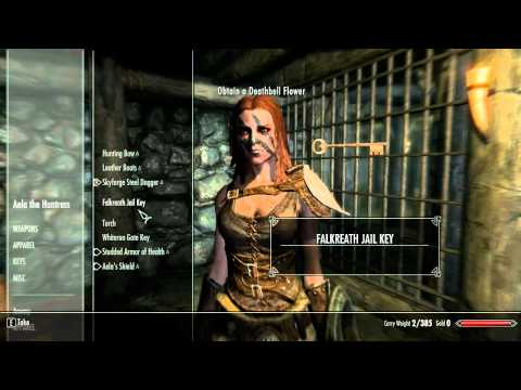 Skyrim Glitch Unlimited Armor   Wear multiple armors at once